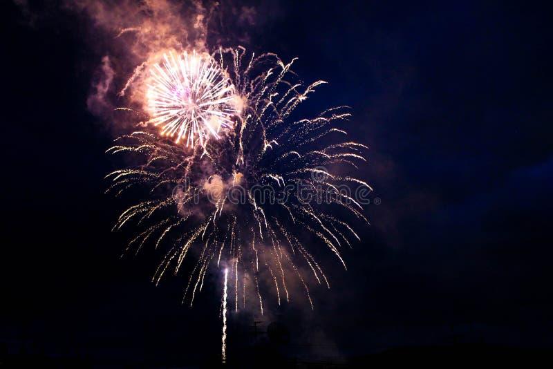 Jaskrawi fajerwerki w nocnym niebie fotografia royalty free