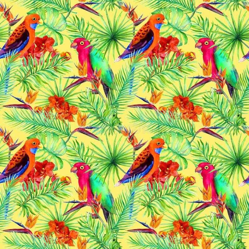 Jaskrawi papuzi ptaki, tropikalny drzewo, dżungla egzot kwitną - ptaka raju kwiat, orchidea bezszwowy wzoru ilustracja wektor
