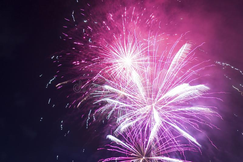 Jaskrawi purpurowi i czerwoni fajerwerki przeciw czarnemu nocnemu niebu fotografia stock