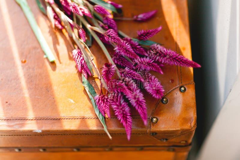 Jaskrawi purpurowi kwiaty, bukieta lying on the beach na walizce obrazy royalty free
