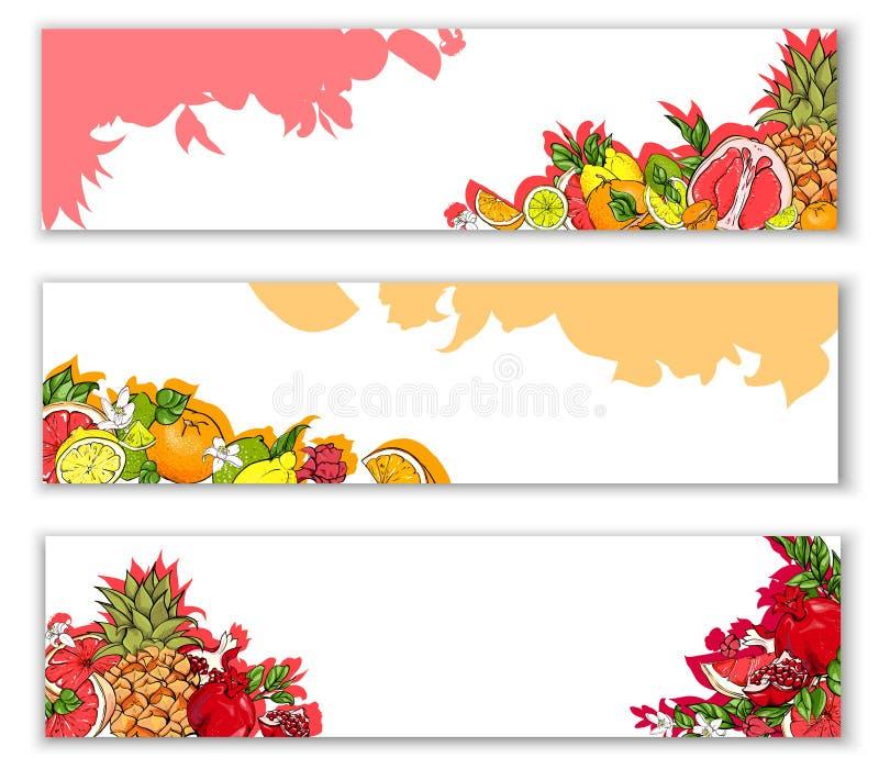 Jaskrawi sztandary z tropikalnymi owoc ilustracja wektor