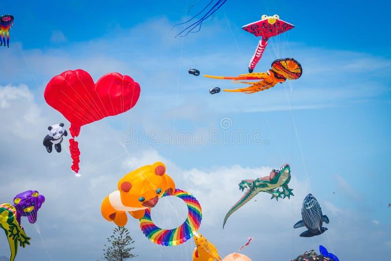Jaskrawy barwić kanie lata przeciw błękitnemu letniego dnia niebu zdjęcia stock