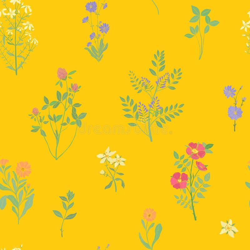 Jaskrawy barwiony bezszwowy wzór z wspaniałymi dzikimi kwitnienie kwiatami lub kwiecenie zielnymi roślinami na żółtym tle ilustracji