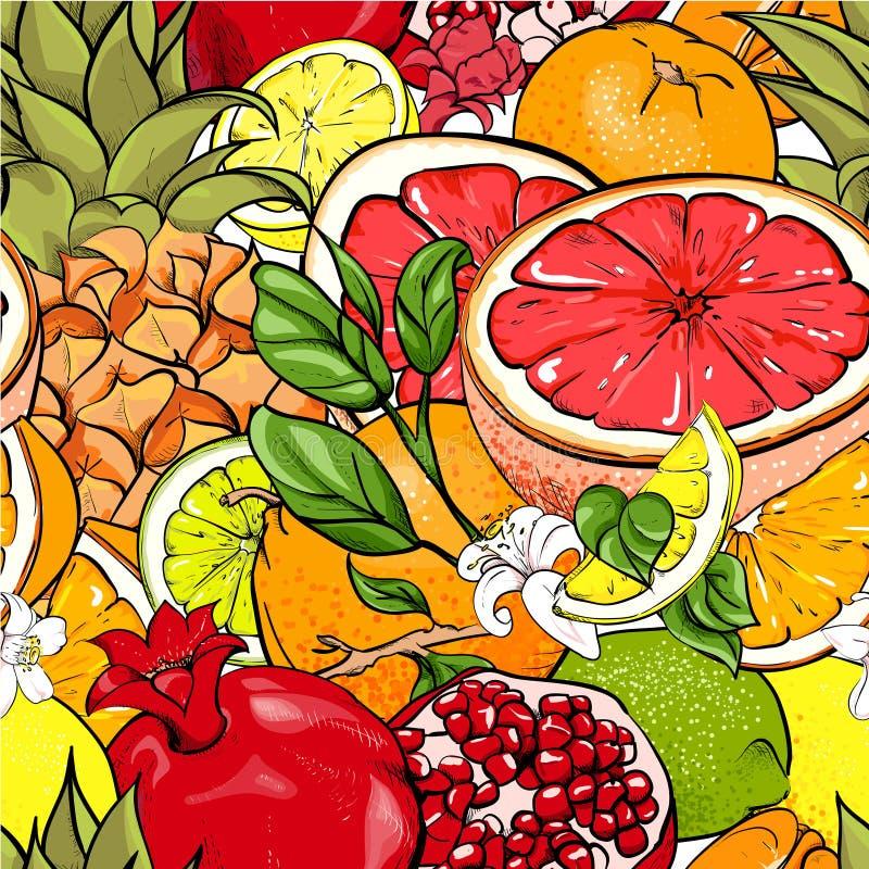 Jaskrawy bezszwowy wzór z tropikalnymi owoc ilustracji