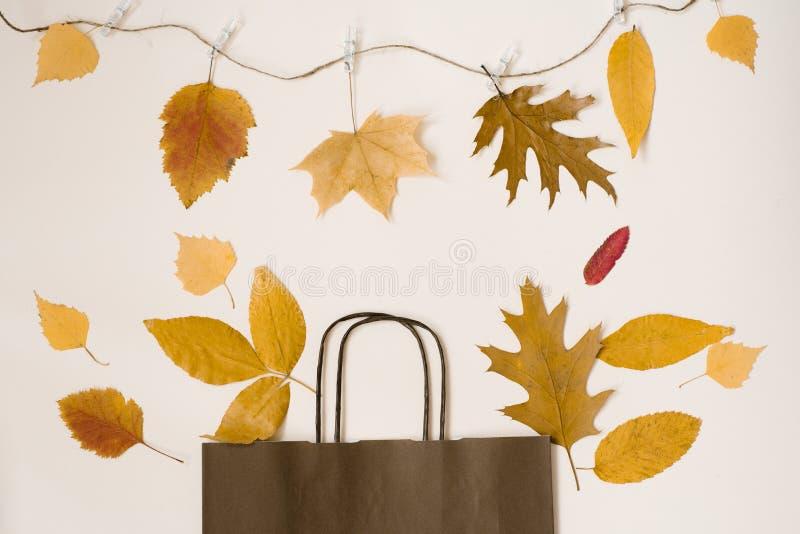 Jaskrawy bukiet spadać jesień opuszcza w prezenta brązu papierowej torbie zdjęcie royalty free
