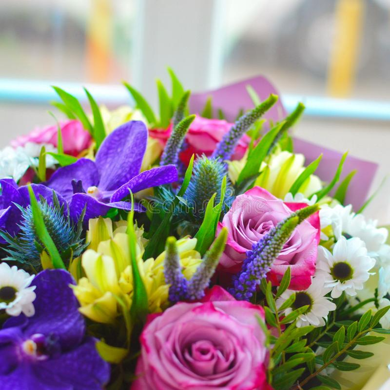 Jaskrawy bukiet z egzotem wącha kwiaty fotografia stock