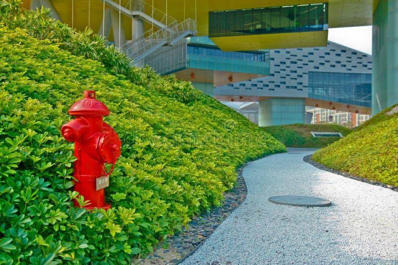 Jaskrawy czerwony ogień hidrant dla nagłego wypadku ogienia dostępu siedzi w zielonej trawie blisko foodpath obraz stock
