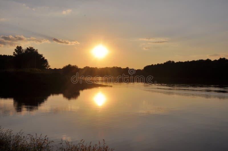 Jaskrawy i kolorowy zmierzch na rzece Słońce chuje za drzewami w wieczór Świecenie położenia słońce na wodzie zdjęcie royalty free