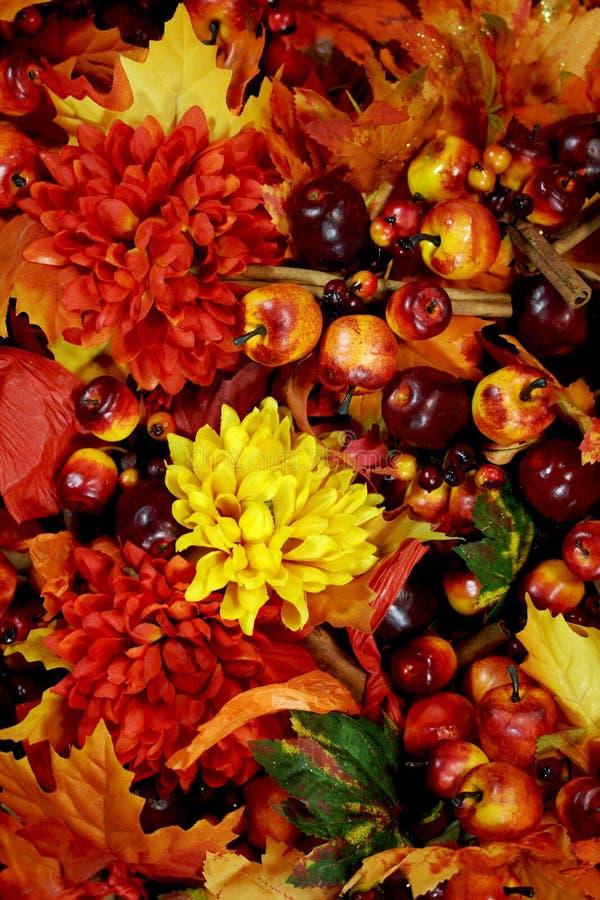 jaskrawy jesień tło zdjęcia stock