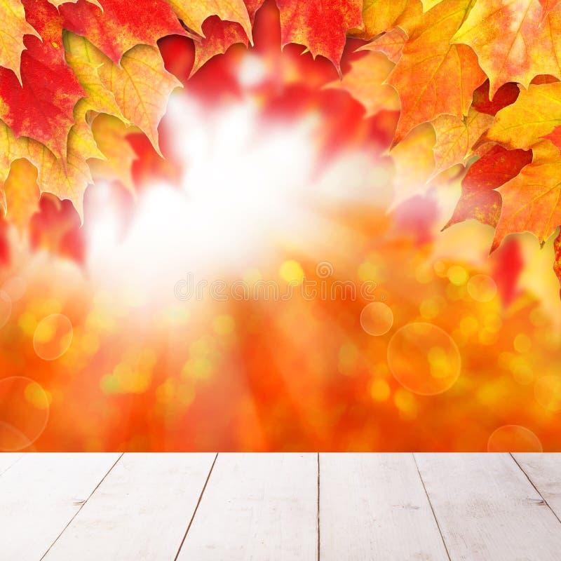 jaskrawy jesie? t?o Czerwoni spadków liście klonowi i abstrakcjonistyczny bokeh zaświecają z pustym białym drewnianej deski tłem obrazy stock