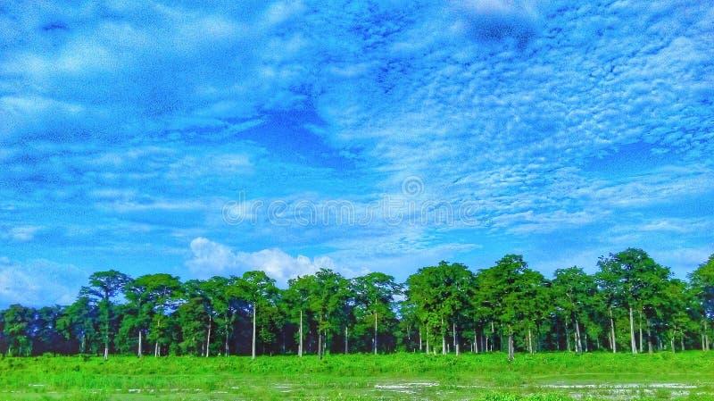Jaskrawy niebo zdjęcia stock