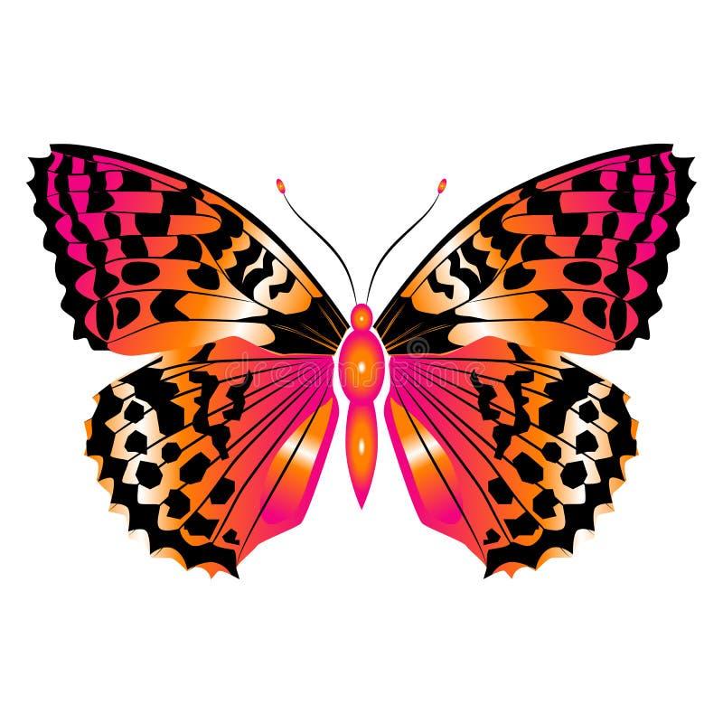 Jaskrawy piękny czerwony motyl Odizolowywająca wektorowa ilustracja ilustracji