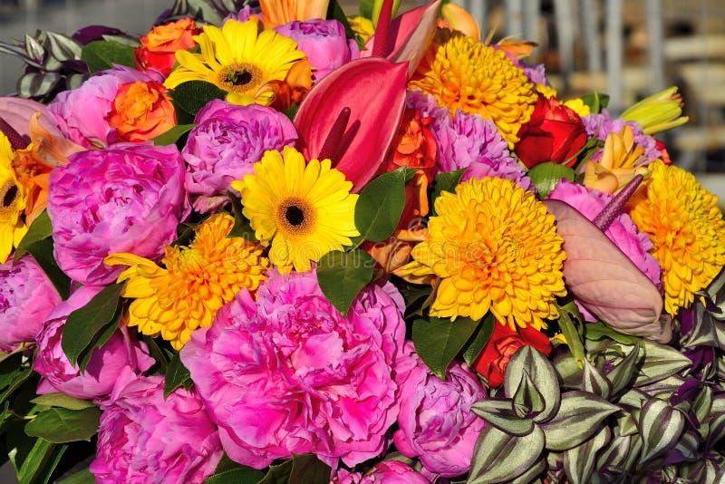 Jaskrawy radosny świąteczny multicolor kwiecisty tło od różnych kwiatów obraz stock