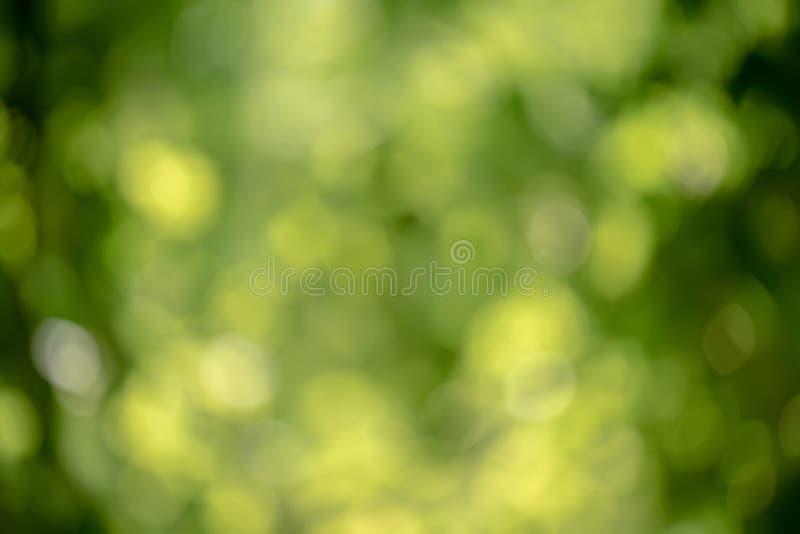 Jaskrawy round światła bokeh na żywej zieleni koloru szmaragdowym tle zdjęcia stock