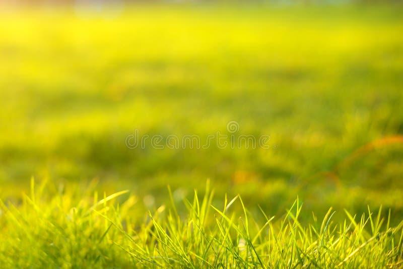 jaskrawy słońce naturalni abstrakcjonistyczni tła zdjęcia royalty free