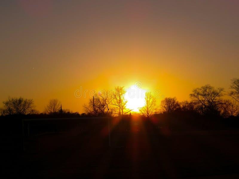 Jaskrawy słońce Ustawia Nad drzewo sylwetki horyzontem fotografia stock
