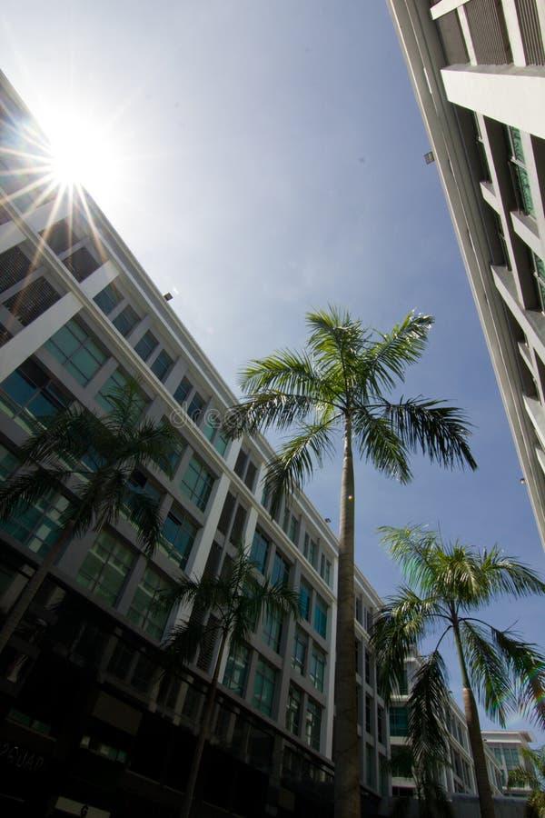 Jaskrawy słoneczny dzień na zewnątrz budynku centrum handlowe fotografia royalty free