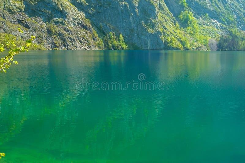Jaskrawy - zielona powierzchnia jeziorny Obersee z odbiciem skała obrazy royalty free