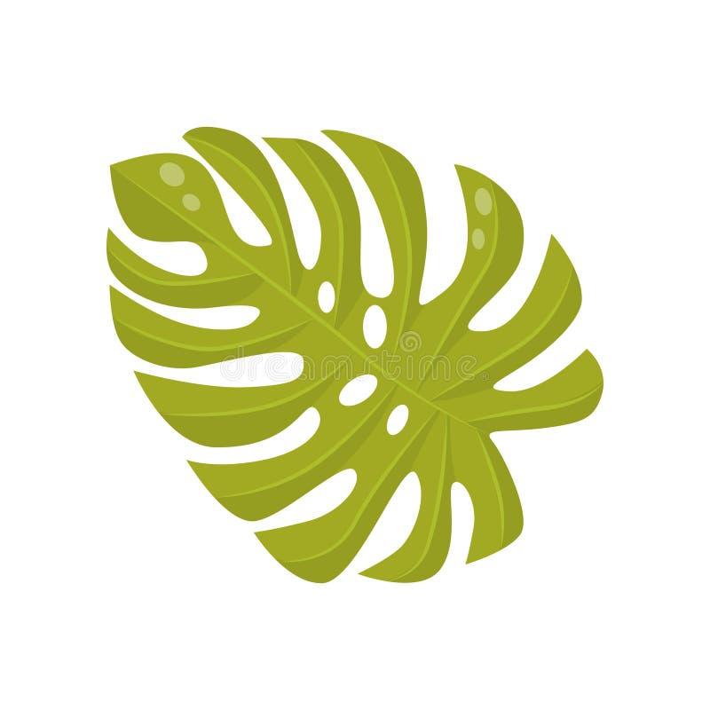 Jaskrawy - zielony liść tropikalna roślina - monstera Dżungli ulistnienie Botaniczny temat Płaski wektorowy element dla promo pla royalty ilustracja