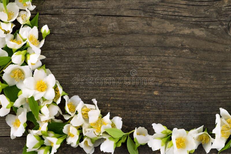 Jasmijnbloem op houten bureau royalty-vrije stock afbeelding