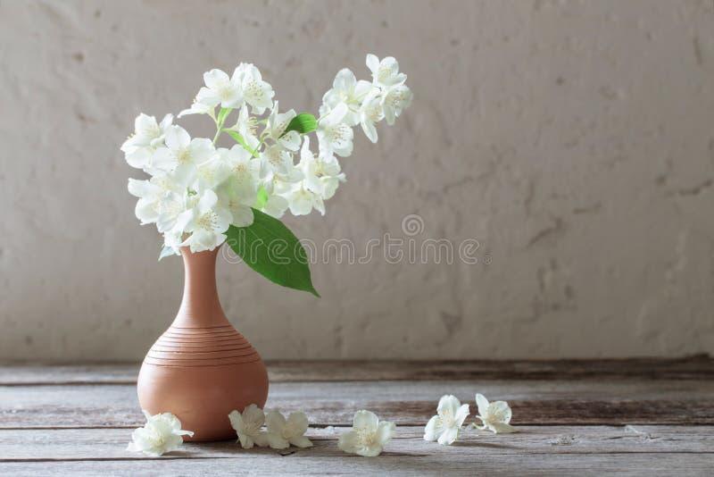Jasmijnbloemen in vaas royalty-vrije stock foto's