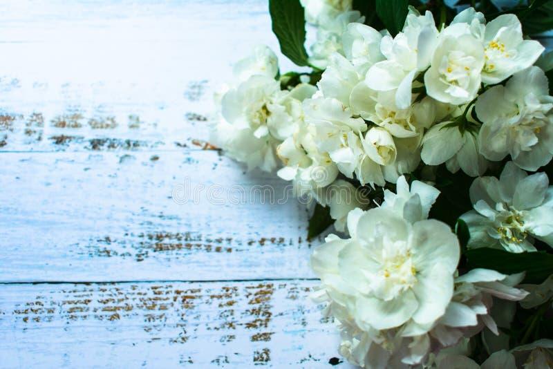 jasmijnboeket op de achtergrond van houten blauwe raad royalty-vrije stock foto's