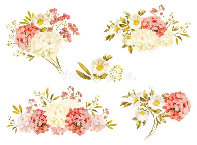 Jasmim branco cor-de-rosa, hortênsia, aquarela cor-de-rosa do casamento das flores ilustração stock