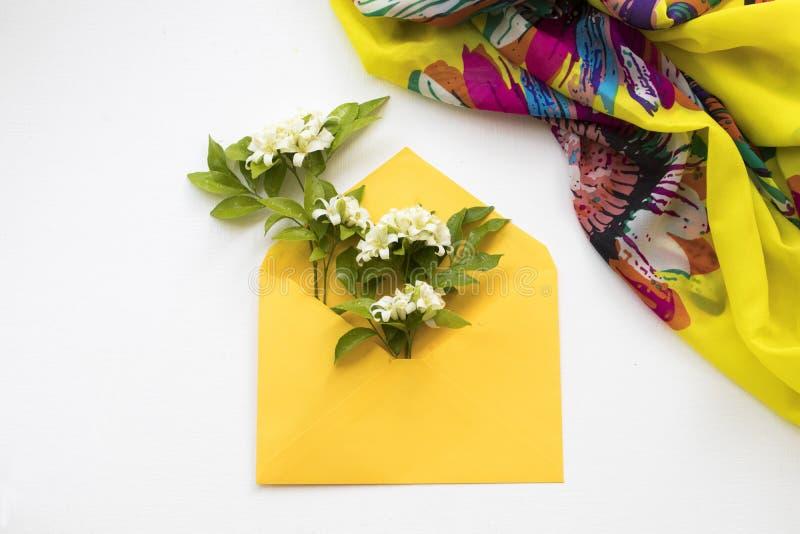Jasmim das flores brancas no envelope com o lenço no branco foto de stock