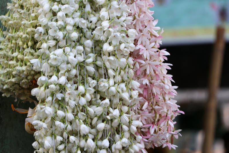 Jasmin blanc et fleur rose faits à la guirlande et à s'accorder photographie stock