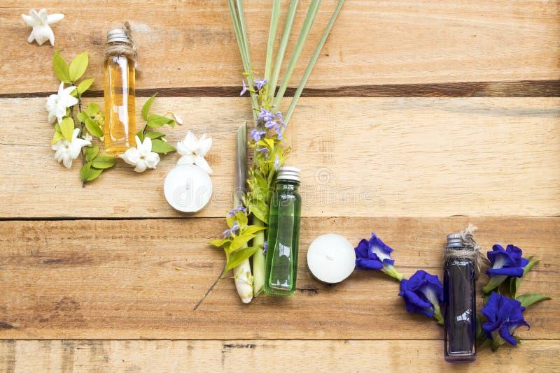 Jasmin de fleur d'extrait d'huiles, pois de papillon et sch?nanthe de fines herbes naturels photo stock