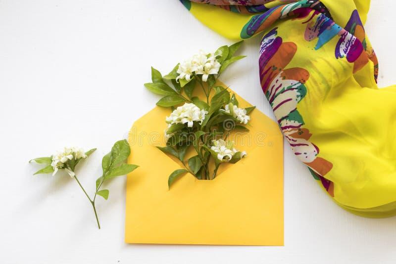 Jasmin för vita blommor i kuvert med halsduken på vit arkivbilder