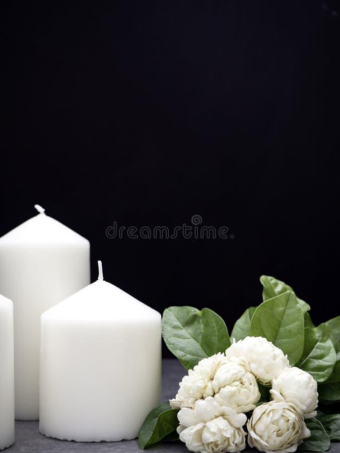 Jasmin och stearinljus på mörk bakgrund royaltyfri bild