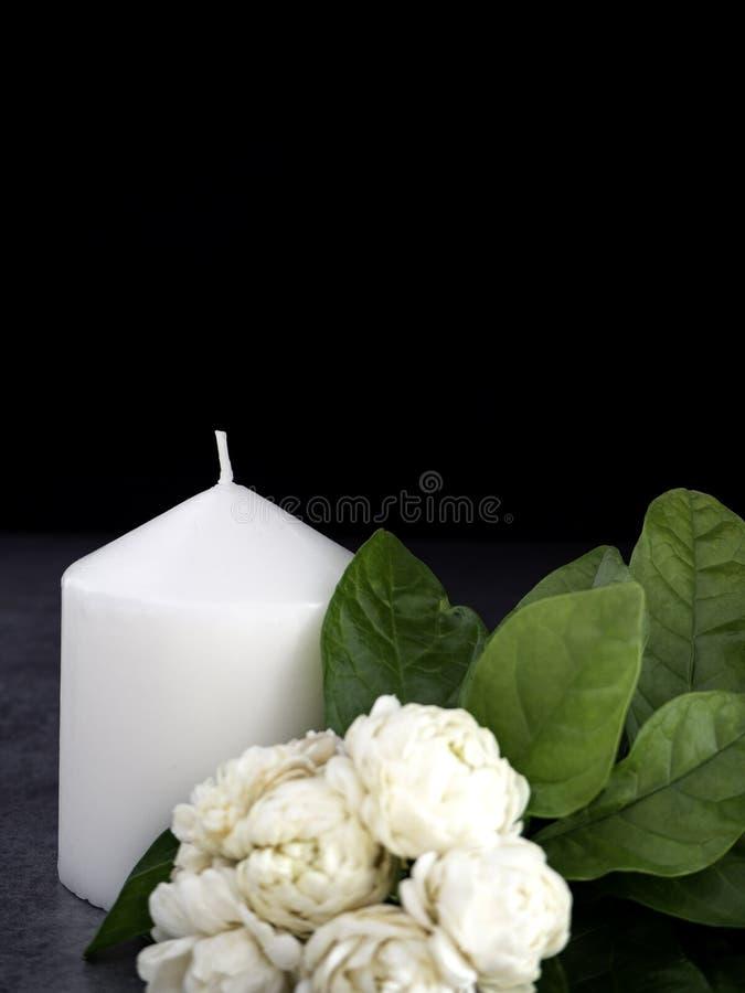 Jasmin och stearinljus på mörk bakgrund royaltyfri fotografi