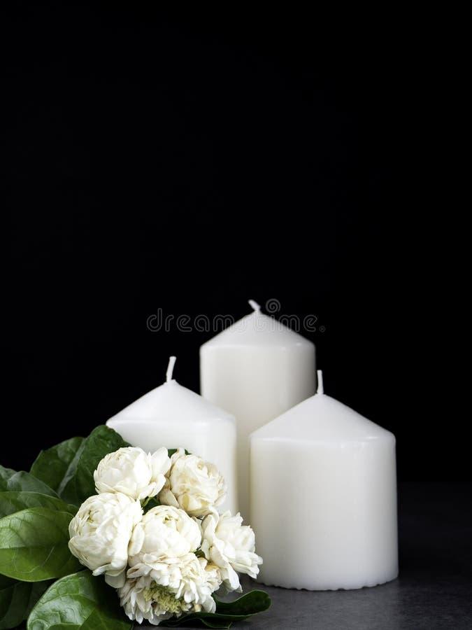 Jasmin och stearinljus på mörk bakgrund royaltyfria foton