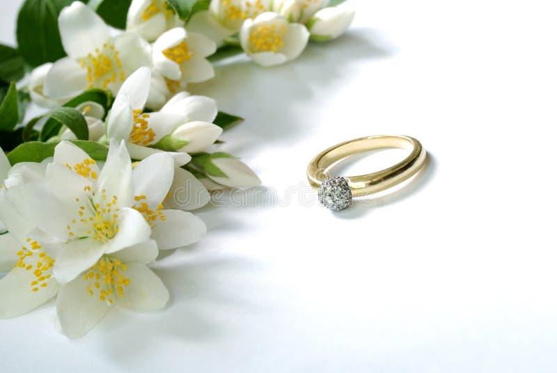 Jasmin & ring. Jasmin flowers and golden ring royalty free stock image