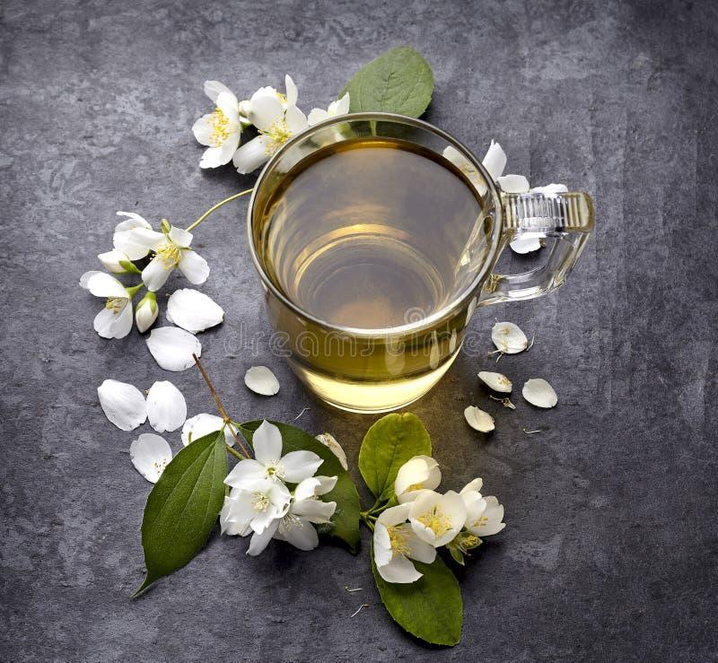 Jasminblommor och kopp av sunt te, växt- medicin En kopp av grönt te med jasmin på en svart bakgrund arkivbild