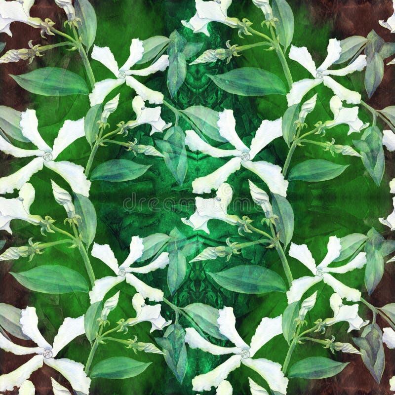 Jasmine - λουλούδια, οφθαλμοί, φύλλα Άνευ ραφής ανασκόπηση Κολάζ των λουλουδιών σε ένα υπόβαθρο watercolor Έντυπα χρήση υλικά, ση ελεύθερη απεικόνιση δικαιώματος