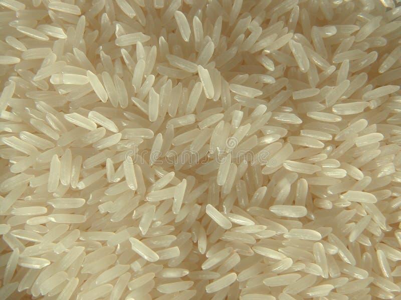jasmine ρύζι στοκ φωτογραφία με δικαίωμα ελεύθερης χρήσης