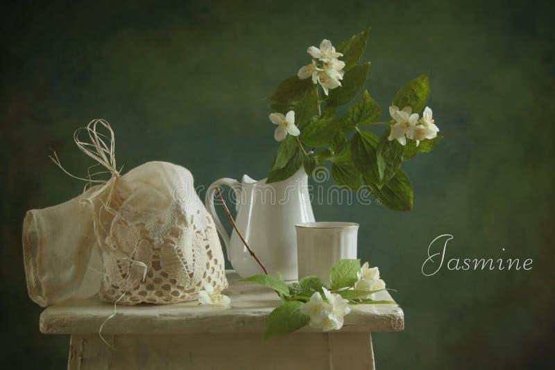 Jasmine Royalty Free Stock Photo