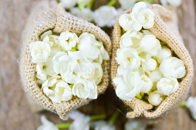 Jasmine flower in burlap bag on old wood background,select focus royalty free stock image