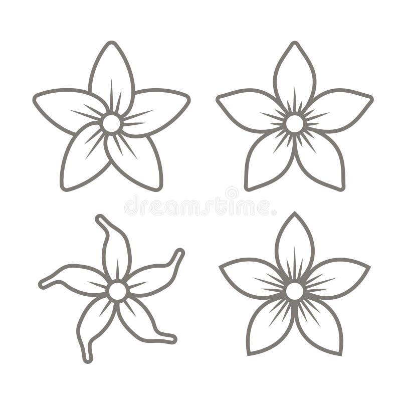 Jasmine Flower Icons Set auf weißem Hintergrund Vektor vektor abbildung