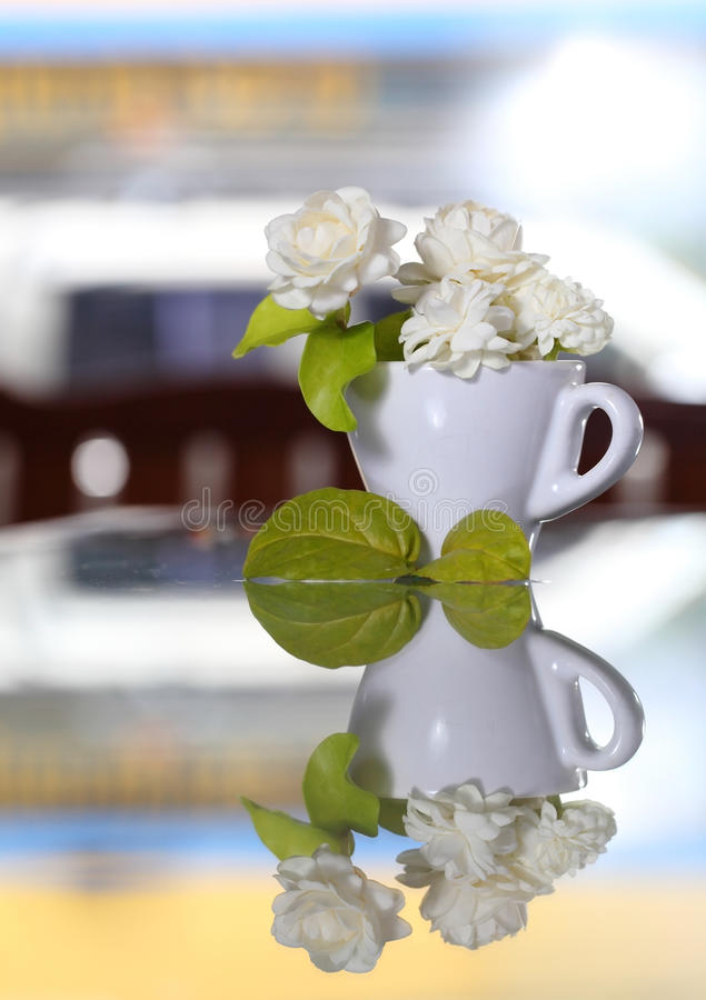 Download Jasmine Flower (for Mother Day Of Thailand) Stock Image - Image of floral, green: 40435017