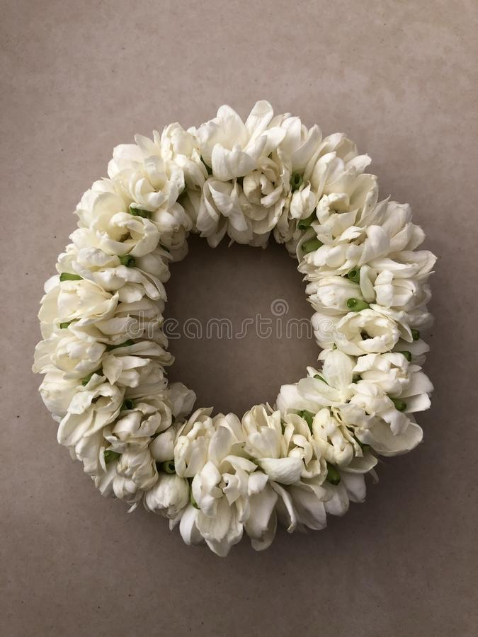 Jasmine garland royalty free stock images