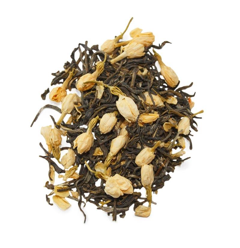 Jasmine Green Tea royaltyfria bilder