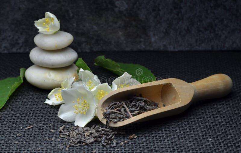 Jasmine green tea royalty free stock image