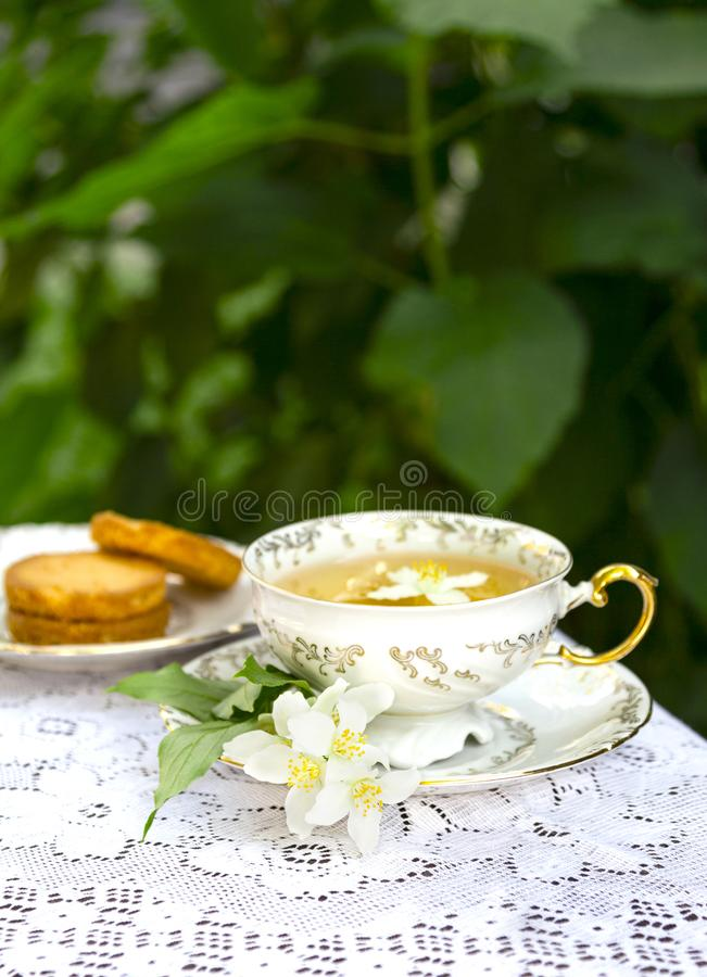 Jasmine herbal tea in a porcelain Cup with biscuit on lace table cloth stock images