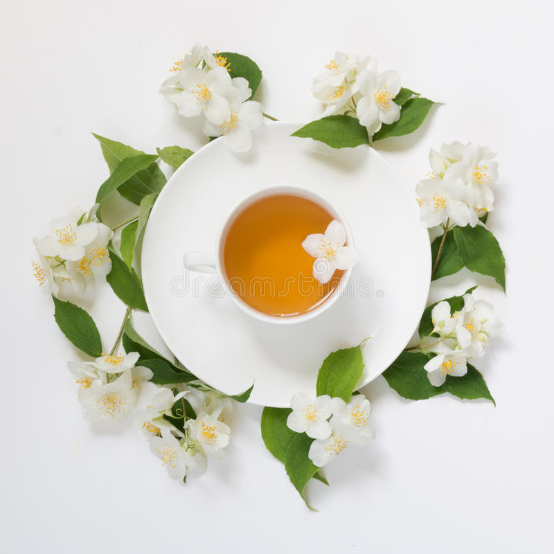 Jasmine leaves and flowers around cup of green tea on white background. Top view and concept. stock photos
