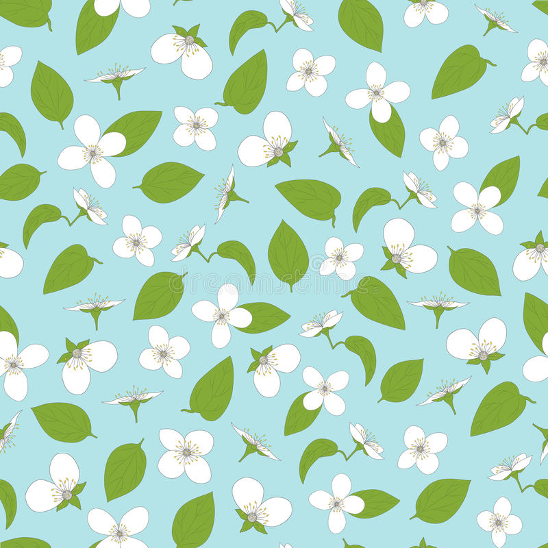 Jasmine seamless pattern. Hand-drawn flowers. And leaves. White on blue. The natural background. Vector illustration royalty free illustration