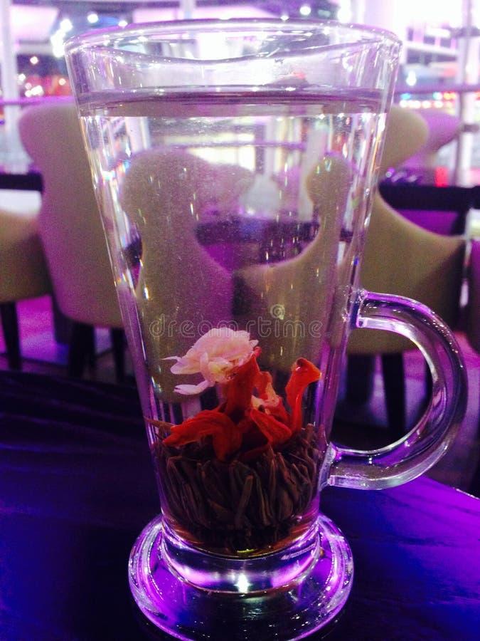 Jasmine Tea royalty-vrije stock fotografie