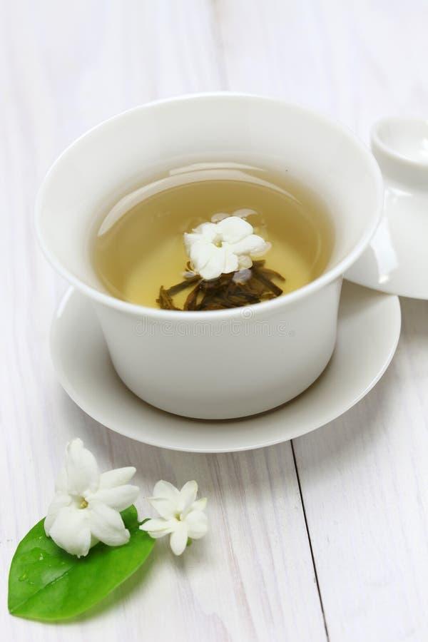 Jasmine Tea immagine stock
